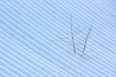 Stripe of Snow pattern Stock Photography