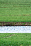 Stripe of a water canal in a green field, upright. Water canal as a bright stripe in a green field, copy space, upright Stock Images