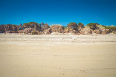 Stripe of white sand dune and plants on the beach in Abel Tasman Royalty Free Stock Photo