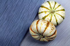 2 striped белые тыквы Стоковые Фотографии RF