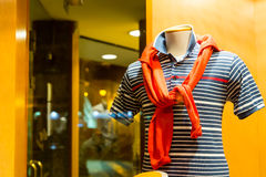 Striped жилет и жизн-томбуй Стоковая Фотография RF