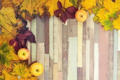 Striped предпосылка с листьями, яблоками Стоковые Фото
