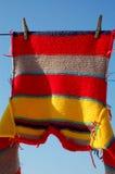 striped свитер Стоковая Фотография