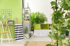 Striped сумка рядом с столом и стул в зеленом интерьере открытого пространства стоковые изображения