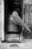 striped чулки переплетенными Стоковая Фотография RF