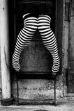 striped чулки трапа Стоковое фото RF