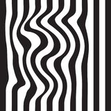 Striped abstract background. black and white zebra print. Vector seamless illustration. eps10 Stock Photos
