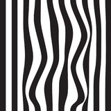 Striped abstract background. black and white zebra print. Vector seamless illustration. eps10. Striped abstract background. black and white zebra print. Vector Stock Image