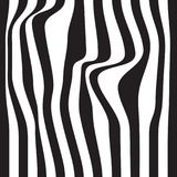 Striped abstract background. black and white zebra print. Vector seamless illustration. eps10 Royalty Free Stock Photography