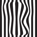 Striped abstract background. black and white zebra print. Vector seamless illustration. eps10. Striped abstract background. black and white zebra print. Vector Royalty Free Stock Images