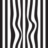 Striped abstract background. black and white zebra print. Vector seamless illustration. eps10. Striped abstract background. black and white zebra print. Vector Royalty Free Stock Photos