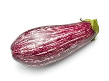 Striped aubergine royalty free stock photo