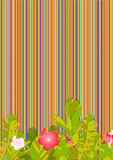 Striped background Stock Photos
