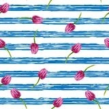 Striped background. Illustration with blue stripes and pinl tulips Royalty Free Stock Image