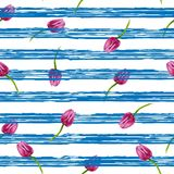 Striped backgroundillustration with blue stripes Illustration with blue stripes and pinl tulips Royalty Free Stock Image