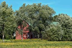 Striped barn in trees Stock Images