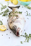 Striped Bass With Fresh Herbs and Lemons. Freshly caught striped bass being prepared for dinner with extreme shallow depth of field Stock Images