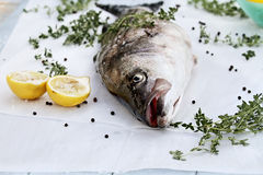 Striped Bass and Ingredients Stock Photos