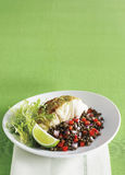 Striped bass lime butter green lentil salad Stock Photo
