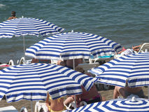 Striped beach umbrellas and white sunbeds Stock Image