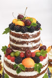 Striped berry cake on white background Royalty Free Stock Photography