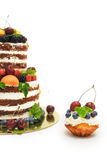 Striped berry cake on white background Stock Image