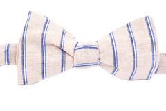 Striped bow tie isolated Royalty Free Stock Photos