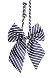 Striped bow tie for women Stock Photos