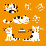 Striped cats Royalty Free Stock Photos