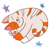 Striped cats sleep Stock Image
