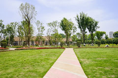 Striped concrete path on grassy lawn in sunny summer Stock Photo