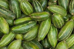 Striped cucumbers. Indian cucumbers. Vegetable Market. Many striped cucumbers. Picture for interior design or website design. Striped cucumbers Royalty Free Stock Images