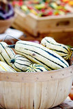 Striped Delicata Squash Royalty Free Stock Photo