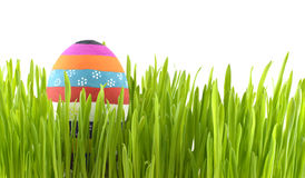 Striped Easter egg in grass Stock Images