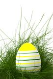 Striped easter egg in green grass Stock Image