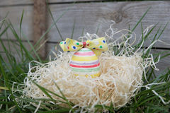 Striped easter egg in a hideout Royalty Free Stock Images