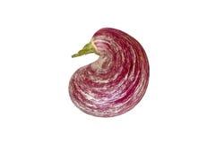 Striped eggplant original shape isolated on white. Background Royalty Free Stock Image