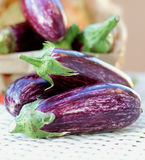 Striped Eggplants Stock Photo