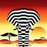 Striped Elephant Stock Photos
