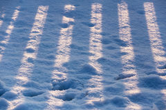 Striped fence shadow on snow. In winter royalty free stock photos