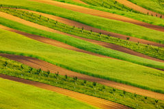 Striped fields of South Moravia Royalty Free Stock Photography