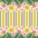 Striped floral background Stock Photo