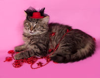 Striped fluffy kitten with Christmas beads lying on pink Royalty Free Stock Photography