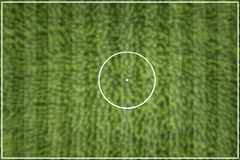 Striped Football field green. European Royalty Free Stock Photography