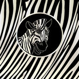 Striped frame with zebra portrait. Vector Stock Photos