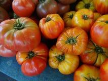 Striped German tomato, Solanum lycopersicum Striped German Stock Photos