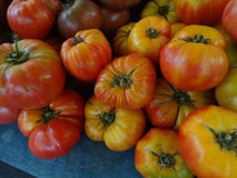 Striped German tomato, Solanum lycopersicum Striped German Royalty Free Stock Photo