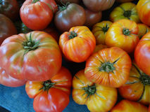 Striped German tomato, Solanum lycopersicum Striped German Royalty Free Stock Image