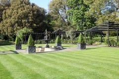 Striped grass ornamental garden Royalty Free Stock Photo