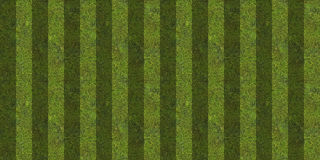 Striped green grass background Stock Photography